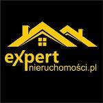 expert-nieruchomości